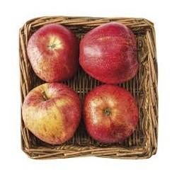 BIO - jablká 4 ks