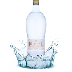 Royal voda 1,5L Daily Ion...